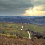 piemonte-wine-road
