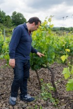 Giuseppe Russo checking his vineyard