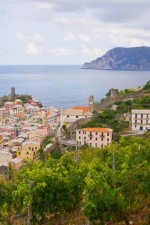The vineyards for the production of this Cinque Terre wine grow above the villages.