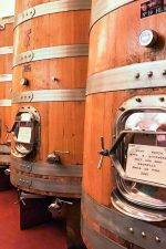 ArPePe cantina, letting the wines rest in Slavonian oak barrels