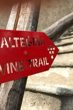 The rugged Valtellina is a grand place to explore Nebbiolo wines