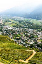 The stunning Valtellina in the Grumello area